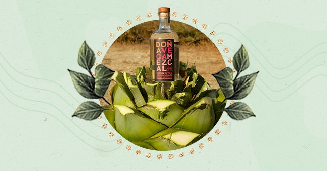 A Guide To Appropriately Appreciate Tequila