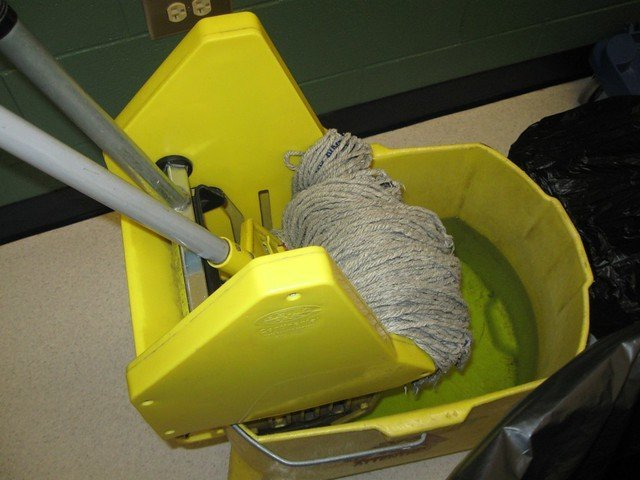 A cleaning mop. | Photo: Flickr