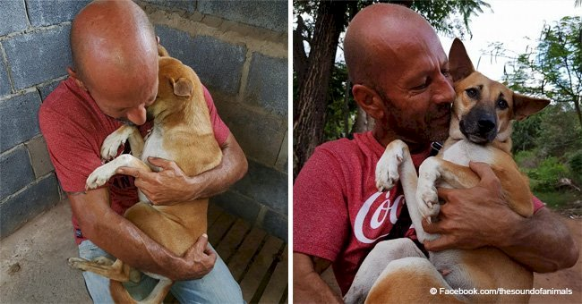 Dog can't stop hugging the man who rescued her from being slaughtered