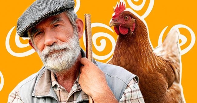 Daily Joke: Farmer Creatively Solves the Problem of Fast Vehicles Running over His Chickens