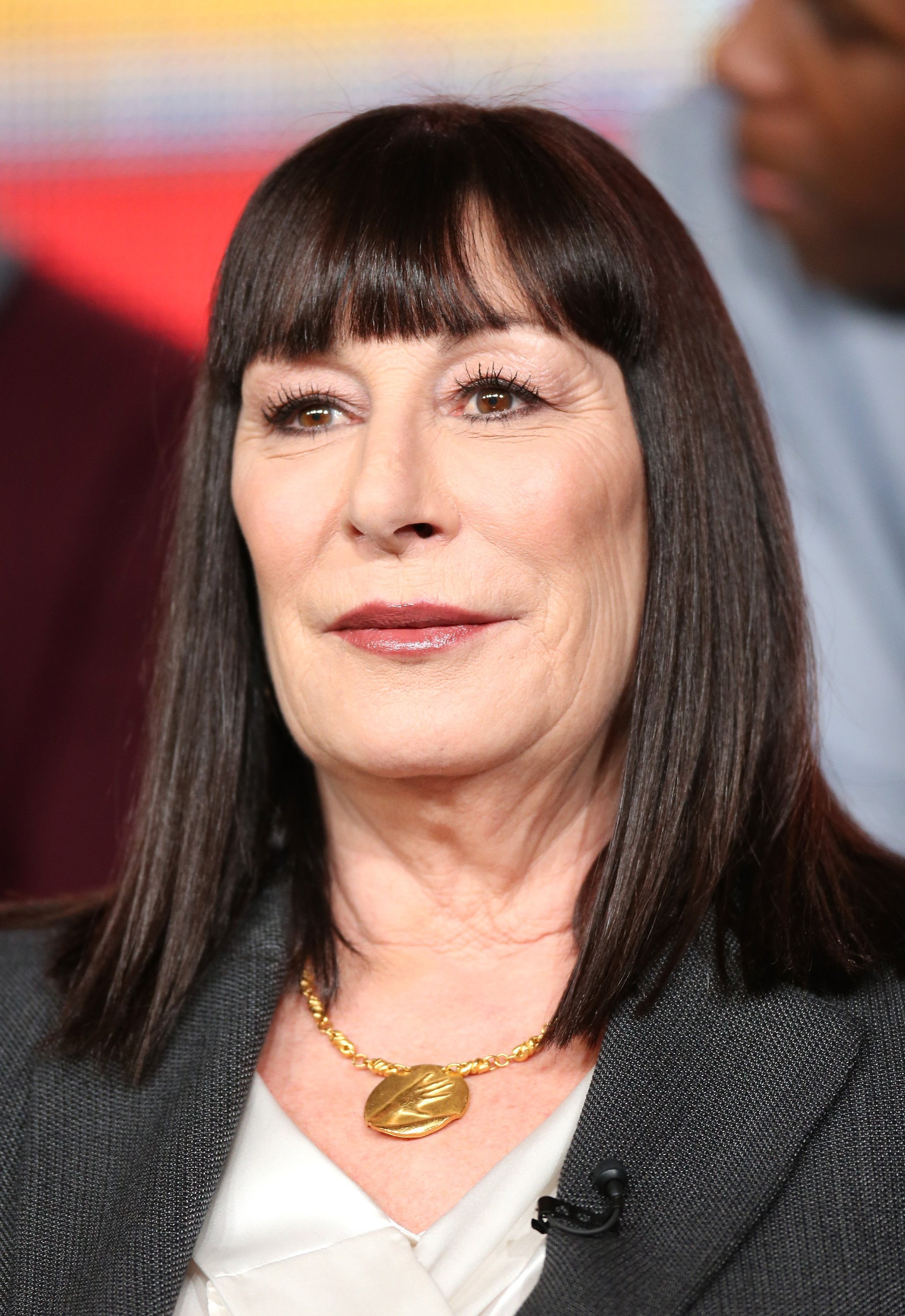 "Getty Images l Anjelica Huston at the ""Smash"" panel discussion on January 6, 2013 in Pasadena, California"