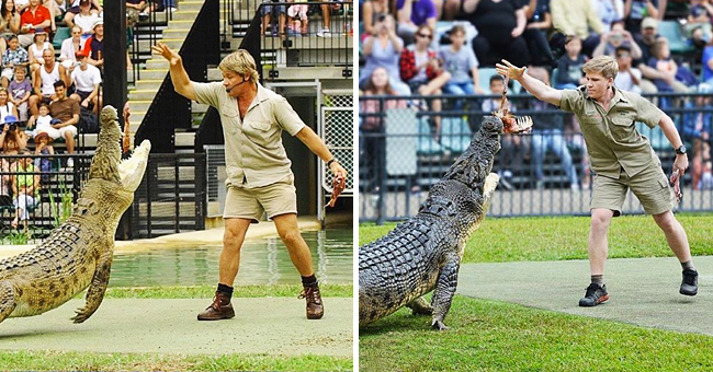 Steve Irwin's Son Robert Recreates Iconic Photo of Late Dad by Bravely Feeding the Same Crocodile