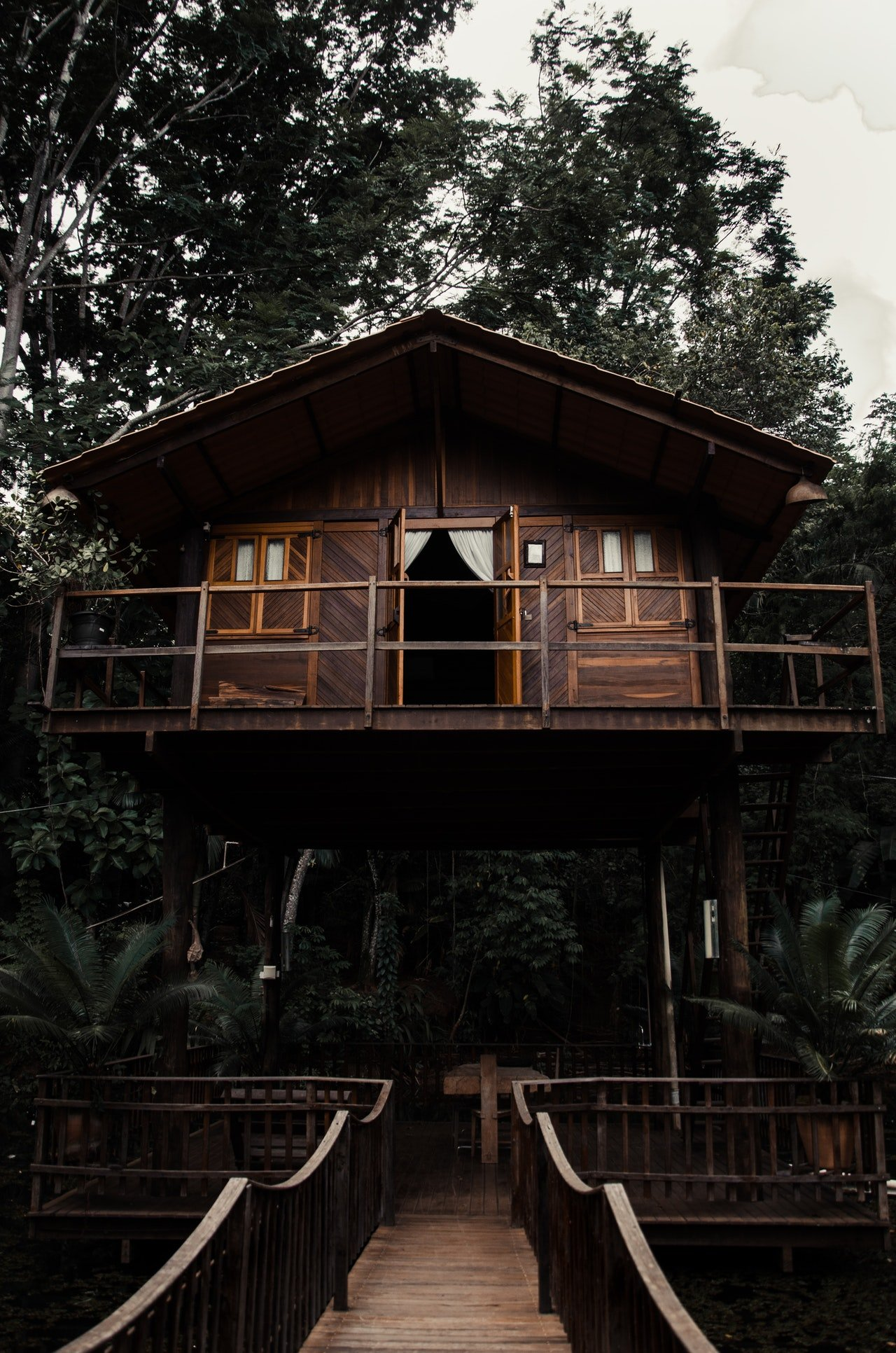 Brandon decided to open a treehouse hotel.   Source: Pexels