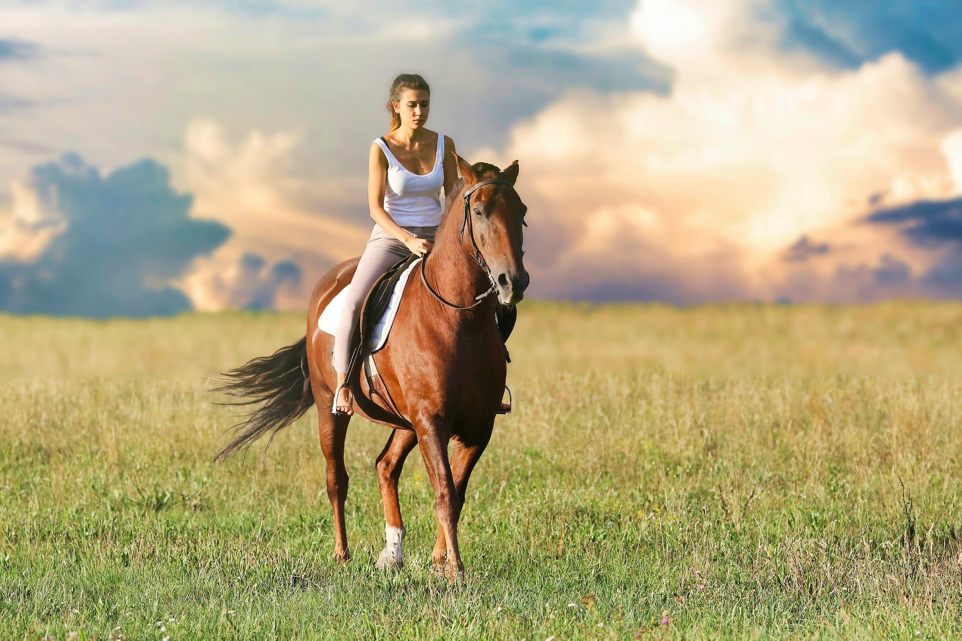 Pictured - A woman riding a horse out in the field   Source: Pixabay