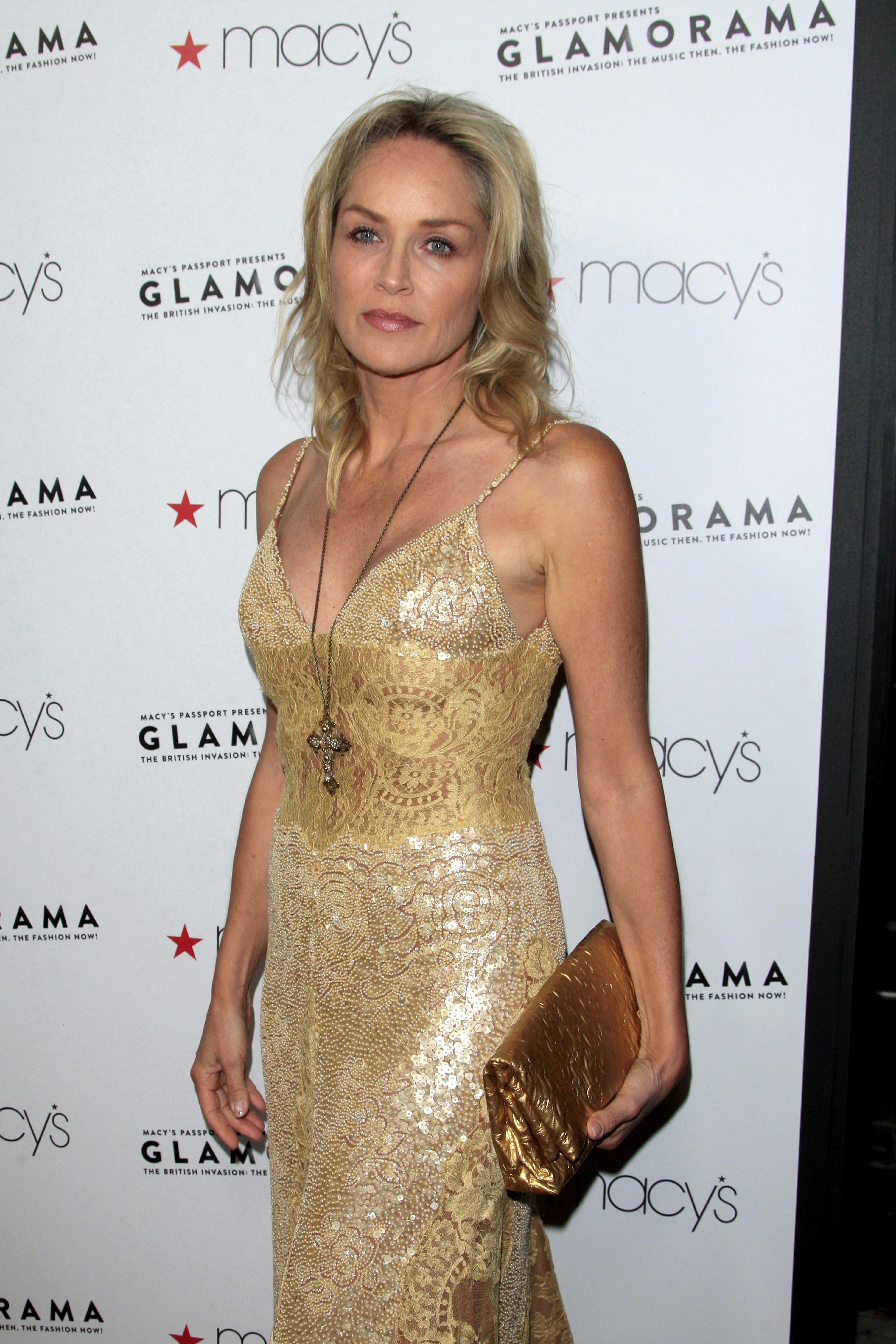 """Sharon Stone attends """"The Search"""" Premiere in Los Angeles 