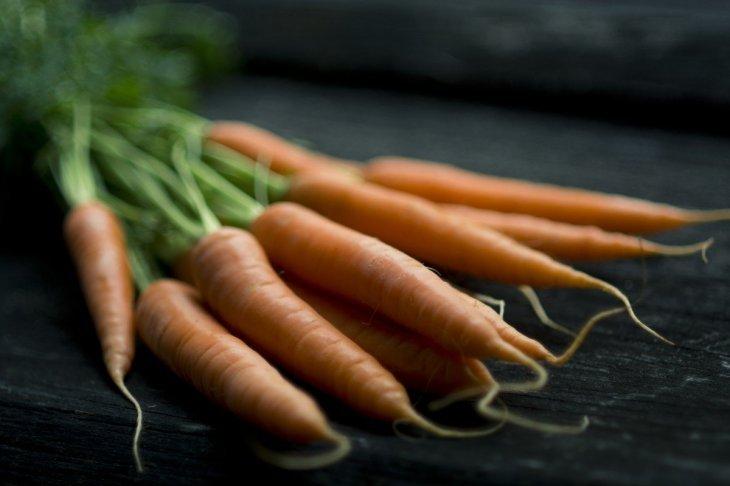 Légumes | Photo :  Wikimedia Commons