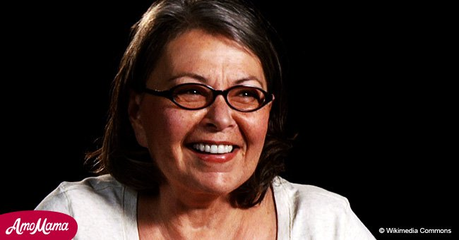 Roseanne Barr 'begged' ABC to keep her show on the air