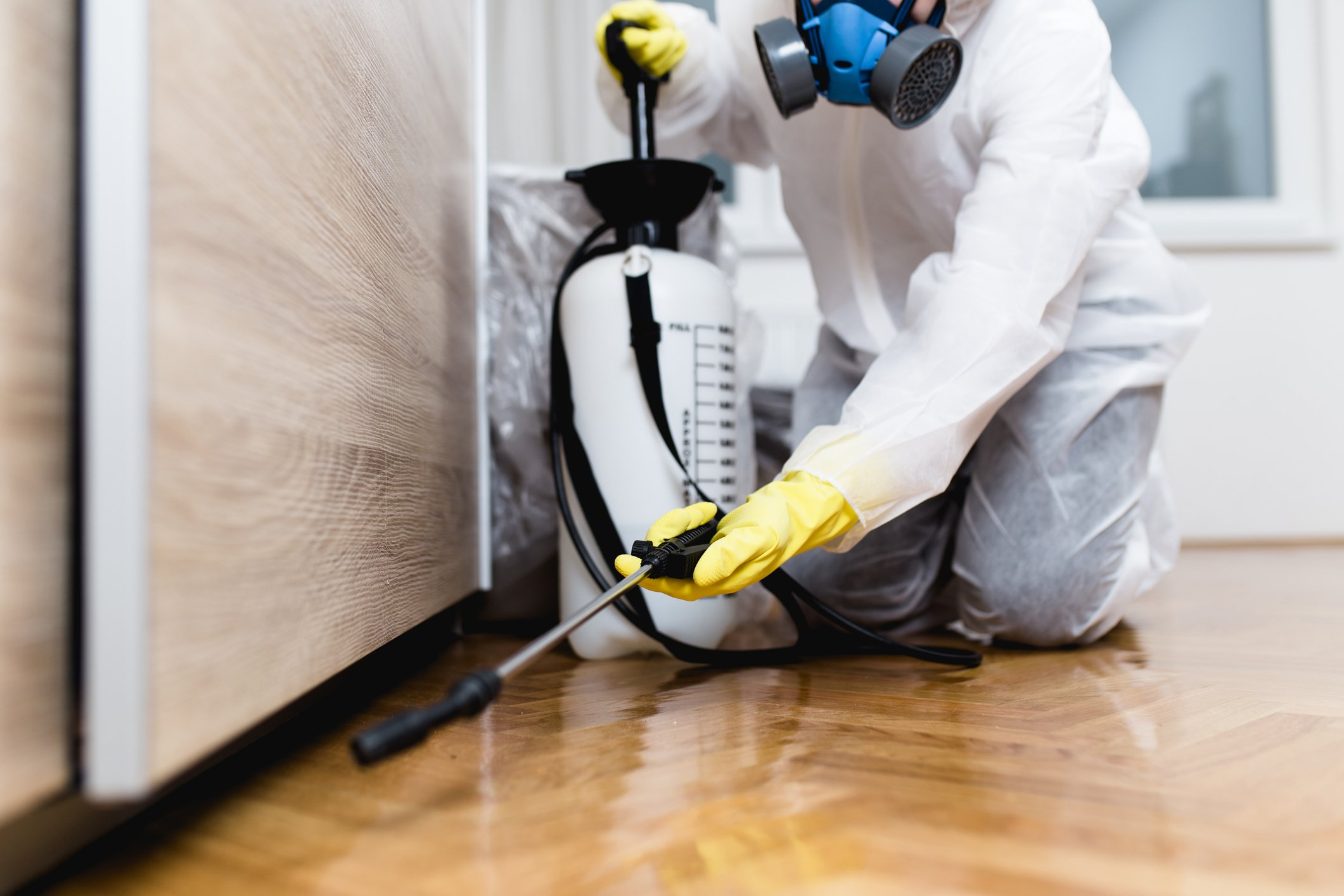 Photo of an exterminator in work wear spraying pesticide or insecticide with sprayer | Photo: Getty Images