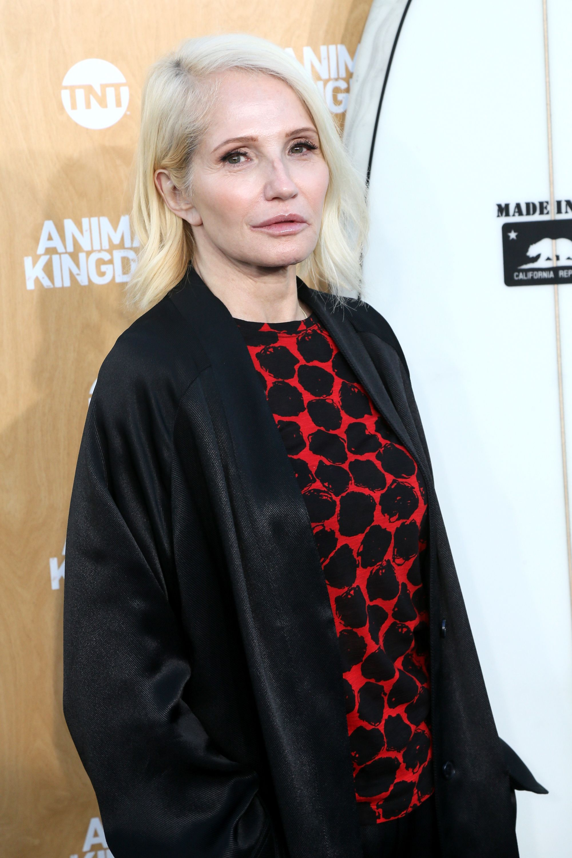 """Ellen Barkin at the premiere of TNT's """"Animal Kingdom"""" held at The Rose Room on June 8, 2016, in Venice, California 