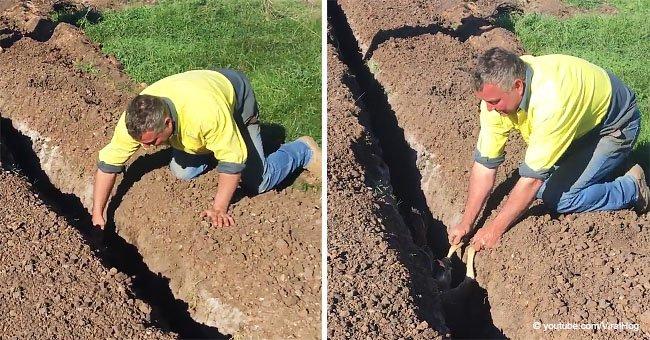 Des ouvriers ont trouvé deux pattes sortant d'un fossé et se sont précipités pour aider