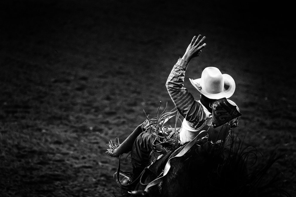 A monochrome rodeo cowboy in a white hat riding a bronco | Photo: Shutterstock/Quattrophotography
