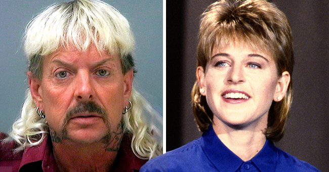Ellen DeGeneres Compares Her Throwback Mullet Photo with 'Tiger King' Joe Exotic's Photo