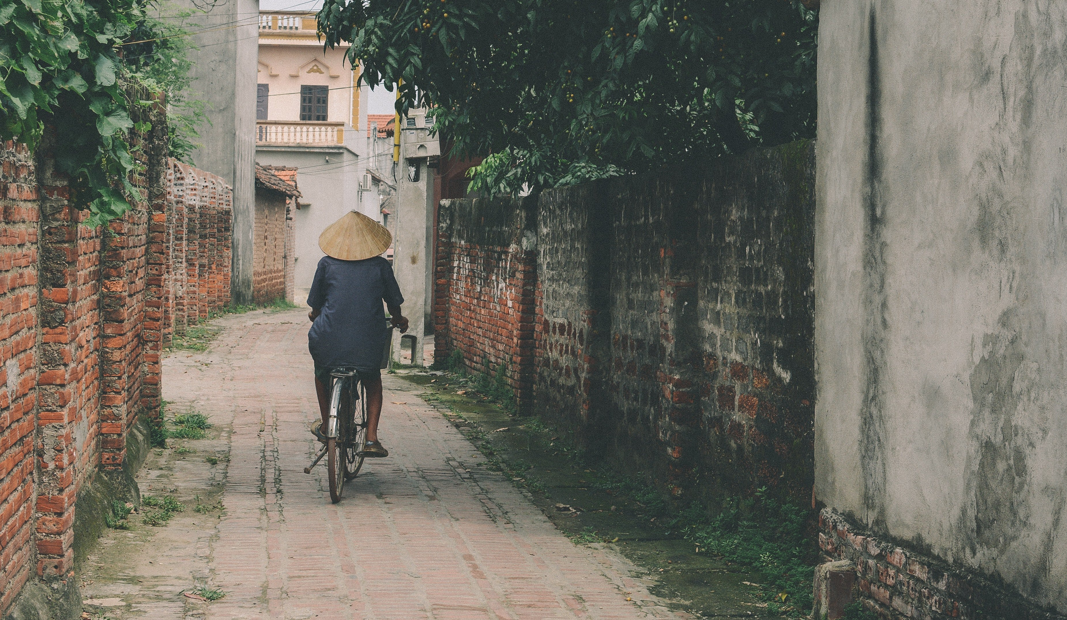 Person riding a bicycle in an alley   Photo: Pexels