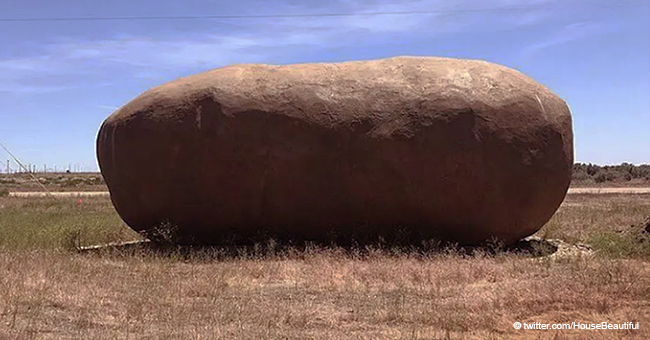 This Giant Potato Is Rented Out and Anyone Can Spend the Night Inside