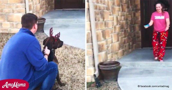 Padre sorprende a hija desolada con perrito al cual cuidó en refugio tras ser puesto en adopción