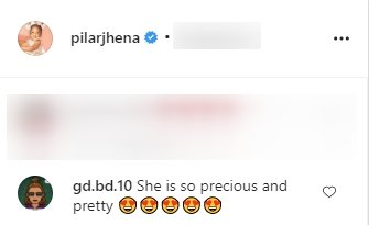A screenshot of a fan's comment on Porsha Williams' post on her Instagram page | Photo: instagram.com/porsha4real/