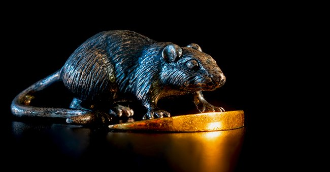Daily Joke: A Man Buys the Statue of a Rat in a Pawn Shop