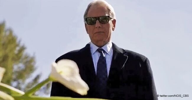 NCIS Fans: 'We All Need Gibbs in Our Lives'