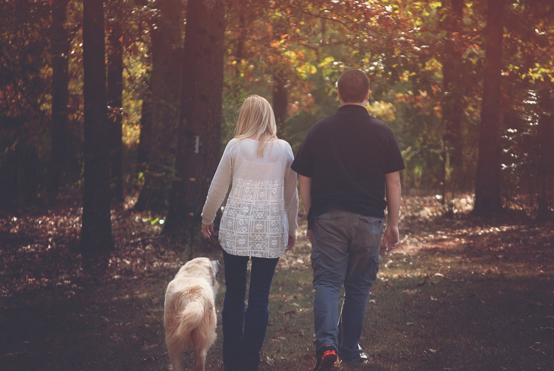 Dog walking with his family   Source: Pixabay