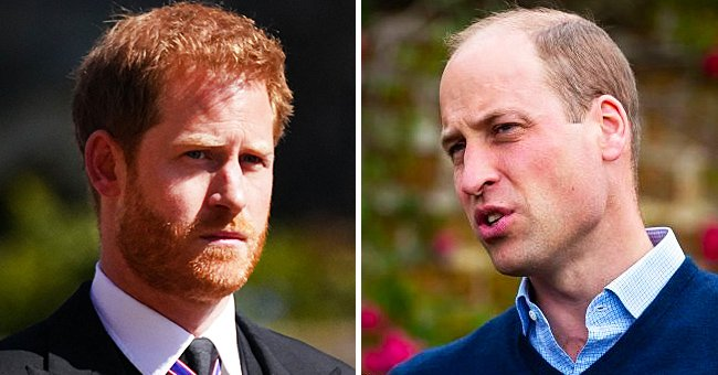 Twitter Users Blast William for Calling Diana Paranoid While Praising Harry for His Warm Words