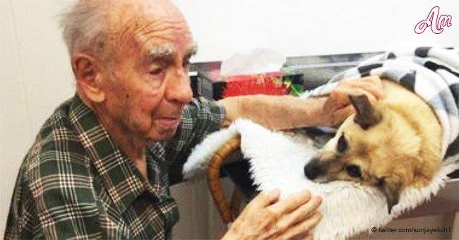 Un homme de 95 ans est forcé de dire au revoir à son seul compagnon qu'il lui restait un dur coup de cœur