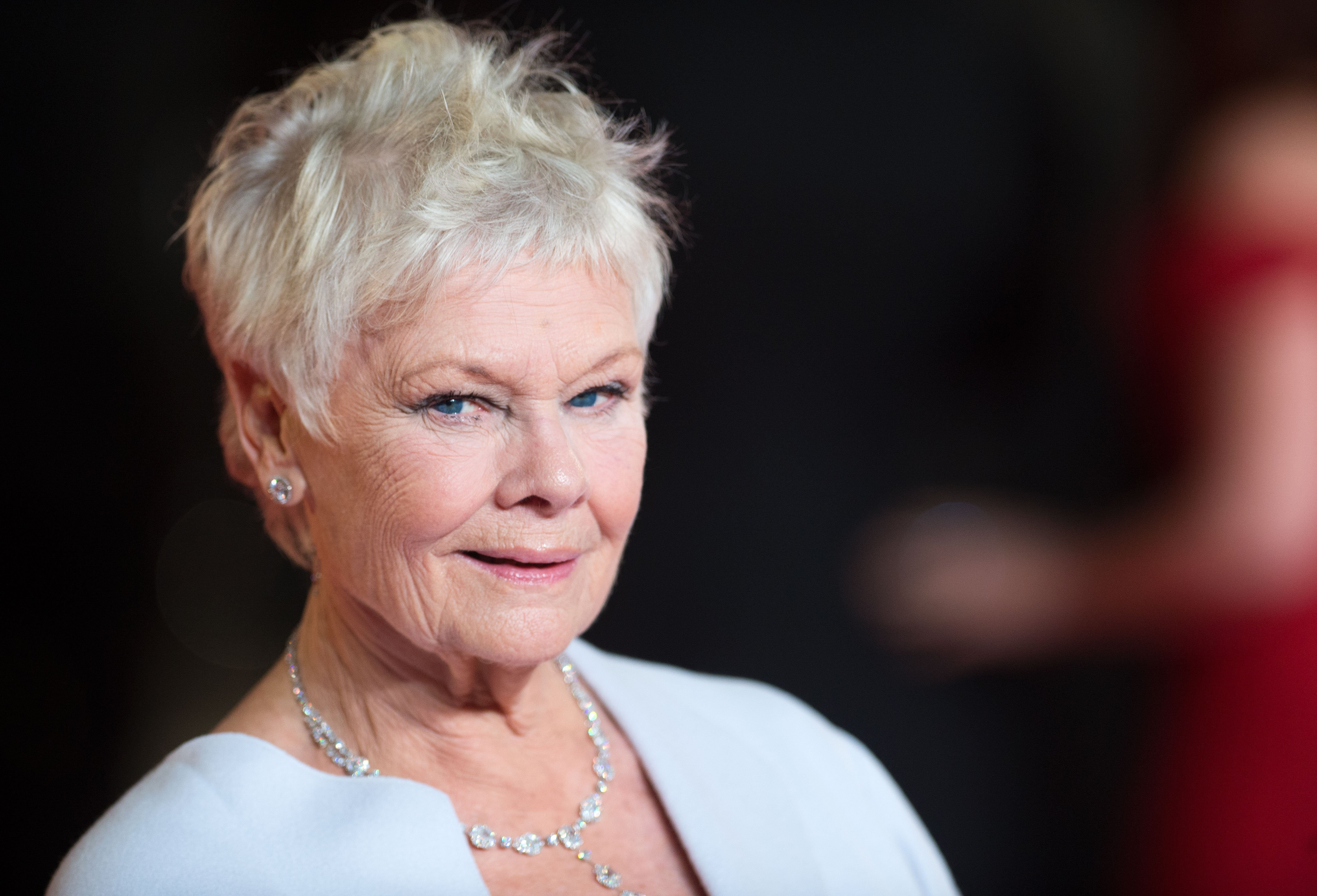 Dame Judi Dench attends the Royal World Premiere of 'Skyfall' at the Royal Albert Hall on October 23, 2012 in London, England | Photo: Getty Images