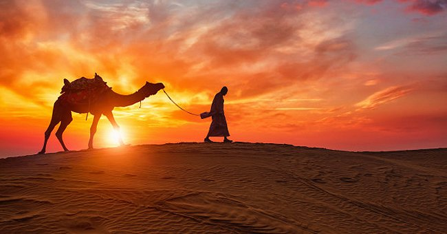 Daily Joke: A Man Who Spent His Whole Life in a Desert Visits His Friend