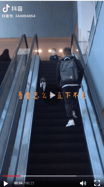 A screenshot from a video of a black and white cat running the wrong way down an escalator in China | Photo: iesdouyin/344994854
