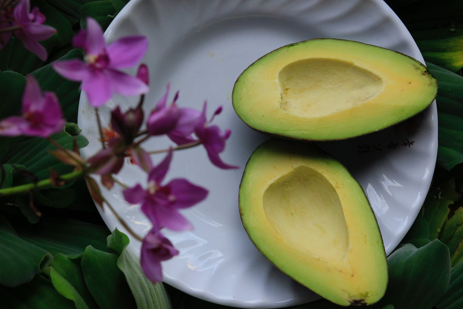 Oil-rich, restorative avocados | Source: Pexels