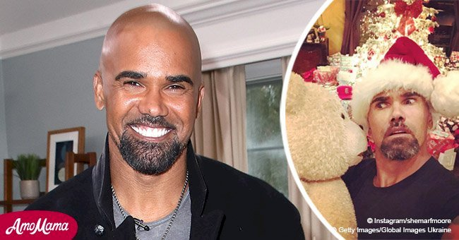Shemar Moore addresses engagement rumors while showing off his sparkling Christmas tree