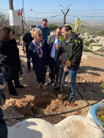 Roseanne planting a tree in the West Bank. | Photo: Twitter/Rabbi Boteach