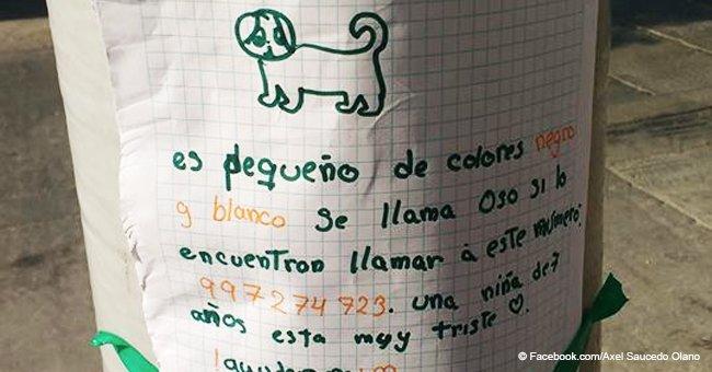 Niña de 7 años que perdió a su perro derrite corazones con el afiche que hizo para buscarlo
