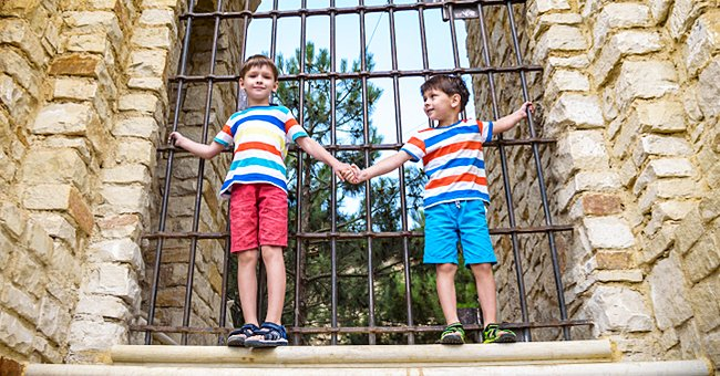 Daily Joke: Two Boys Were Dividing Nuts near the Cemetery Fence