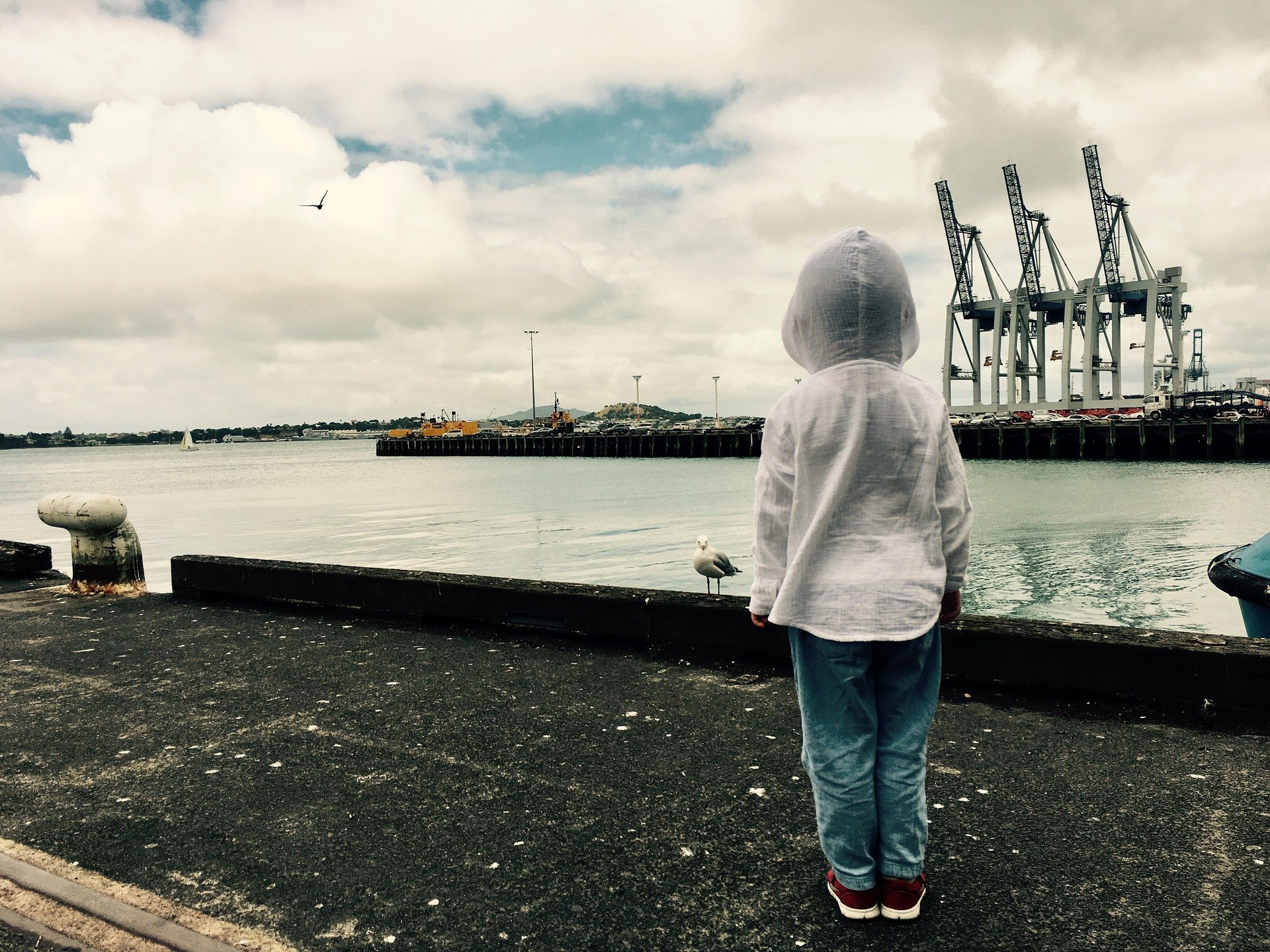 A child looking over the harbor | Source: Pixabay