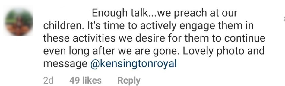 Fan comments underneath shot of Prince William, Prince George, and Princess Charlotte | Photo: Instagram/ Kensington Royal