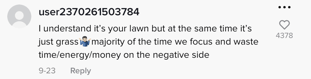 A comment on a video showing trespassers walking on someone's lawn being splashed water from an automatic sprinkler. | Photo:  tiktok.com/@tgunz81