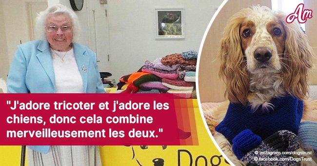 Une femme de 89 ans a tricoté plus de 450 couvertures et pulls pour aider des chiens de refuge