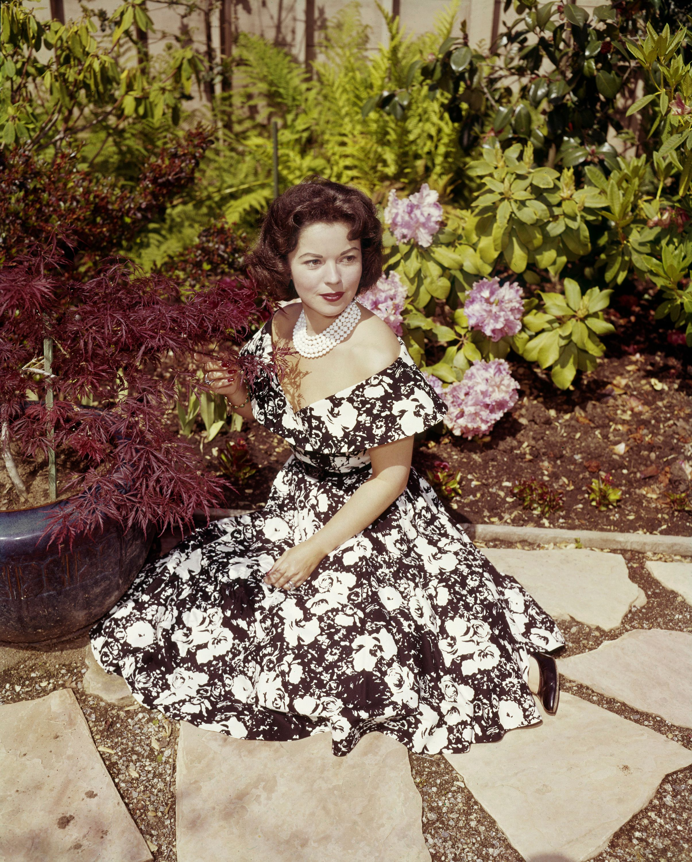 L'actrice Shirley Temple. | Photo : Getty Images
