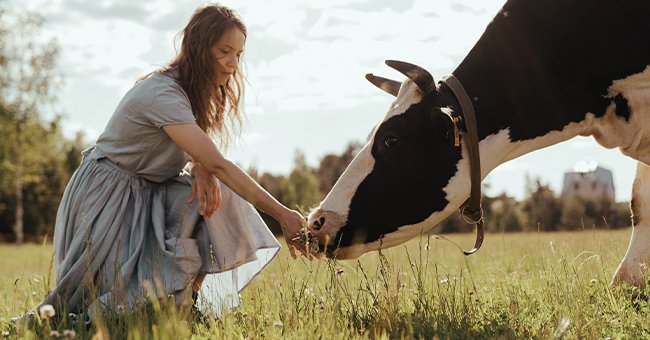 A milkmaid with a cow. | Photo: Pexels