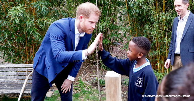 Here's Why Prince Harry Collects All the Litter That Passes His Way