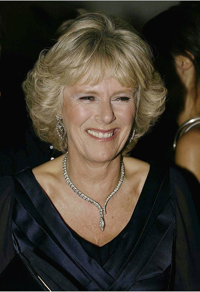 Camilla Parker-Bowles at the 'Fashion Rocks' concert and fashion show in aid of the Princes Trust in 2003   Source: Getty Images