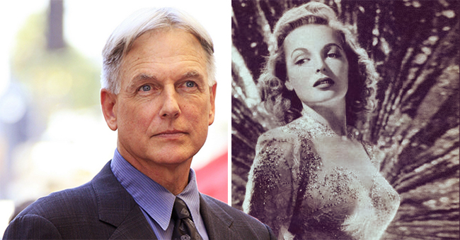Mark Harmon's Mother Elyse Knox's Life and Death