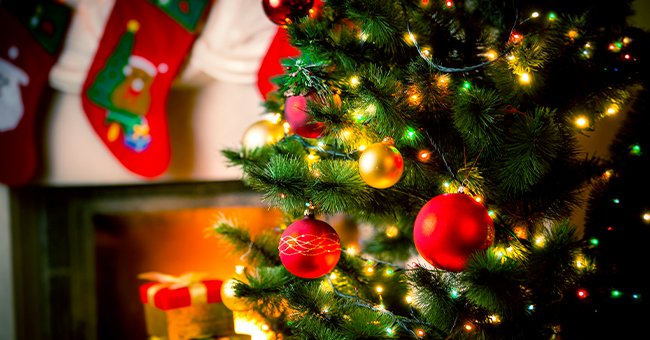 Expert Tips and Ideas to Keep Your Christmas Tree Fresh