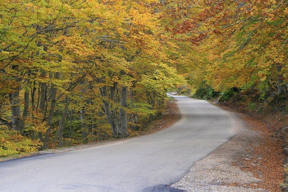 Parque Natural de la Dehesa del Moncayo, en el sector central de la Cordillera Ibérica. | Imagen: Flickr