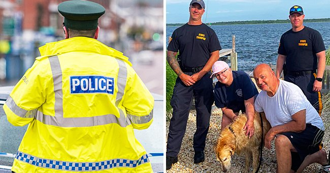 Police Officers Rescue Missing Golden Retriever from Water after 16 Days of Searching