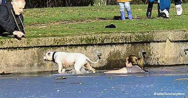Frau schockiert Umstehende, als sie in gefrorenen See springt und einen Hund rettet