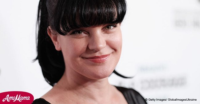 'NCIS' actress Pauley Perrette's ex-husband claimed she harassed and defamed him
