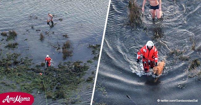 Hombre que se arrojó al agua para salvar a su perro fue rescatado por helicóptero
