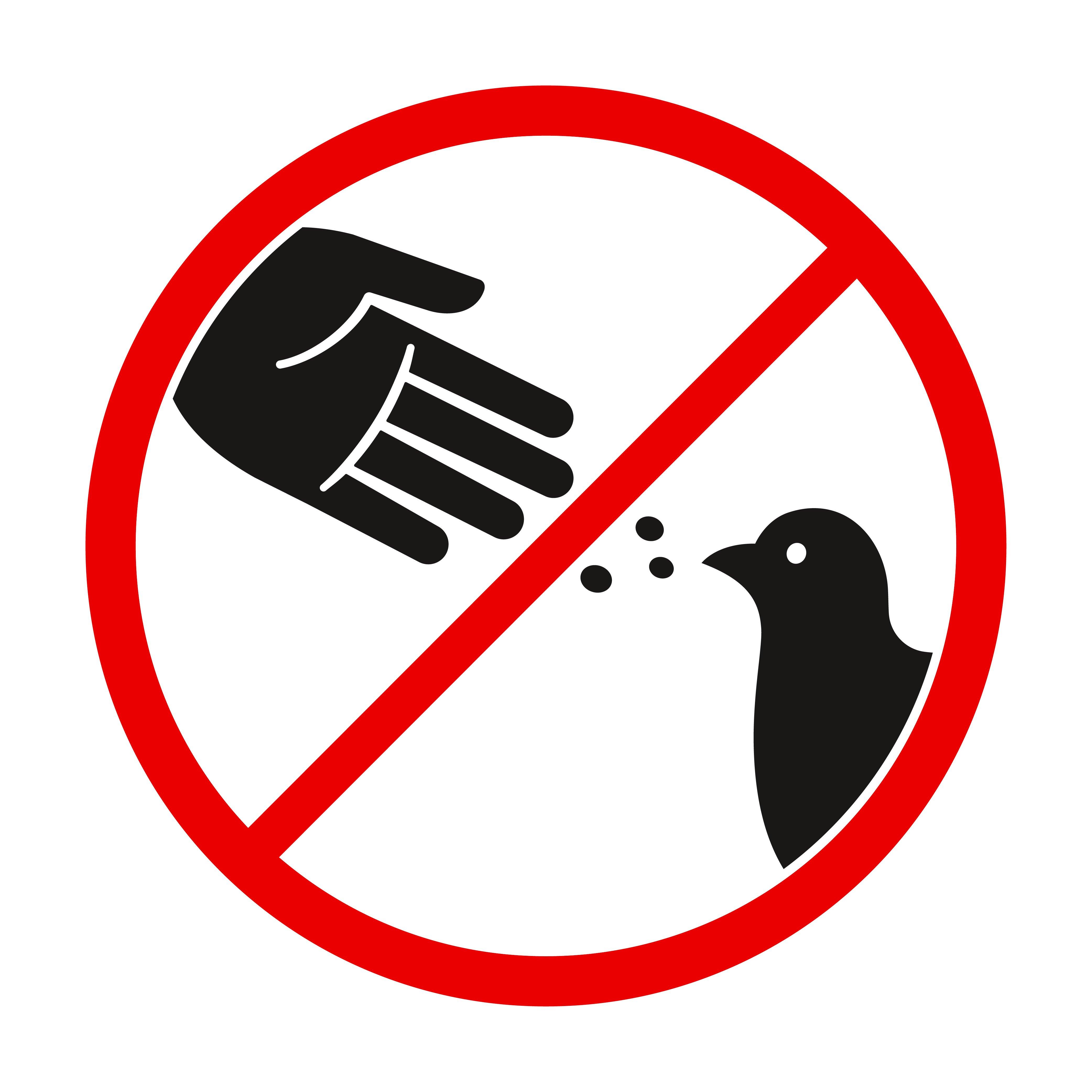 Letrero de no alimentar a las palomas.    Fuente: Shutterstock