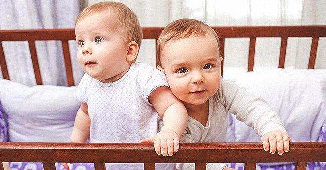 Deux bébés assissent dans un berceau | Photo : Shutterstock